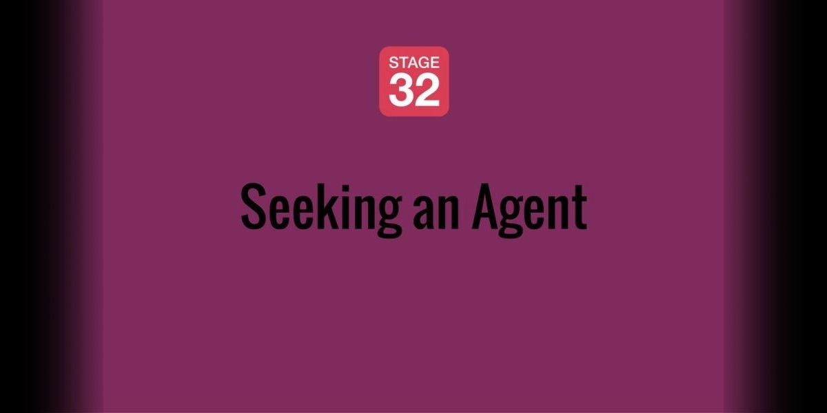 Seeking an Agent