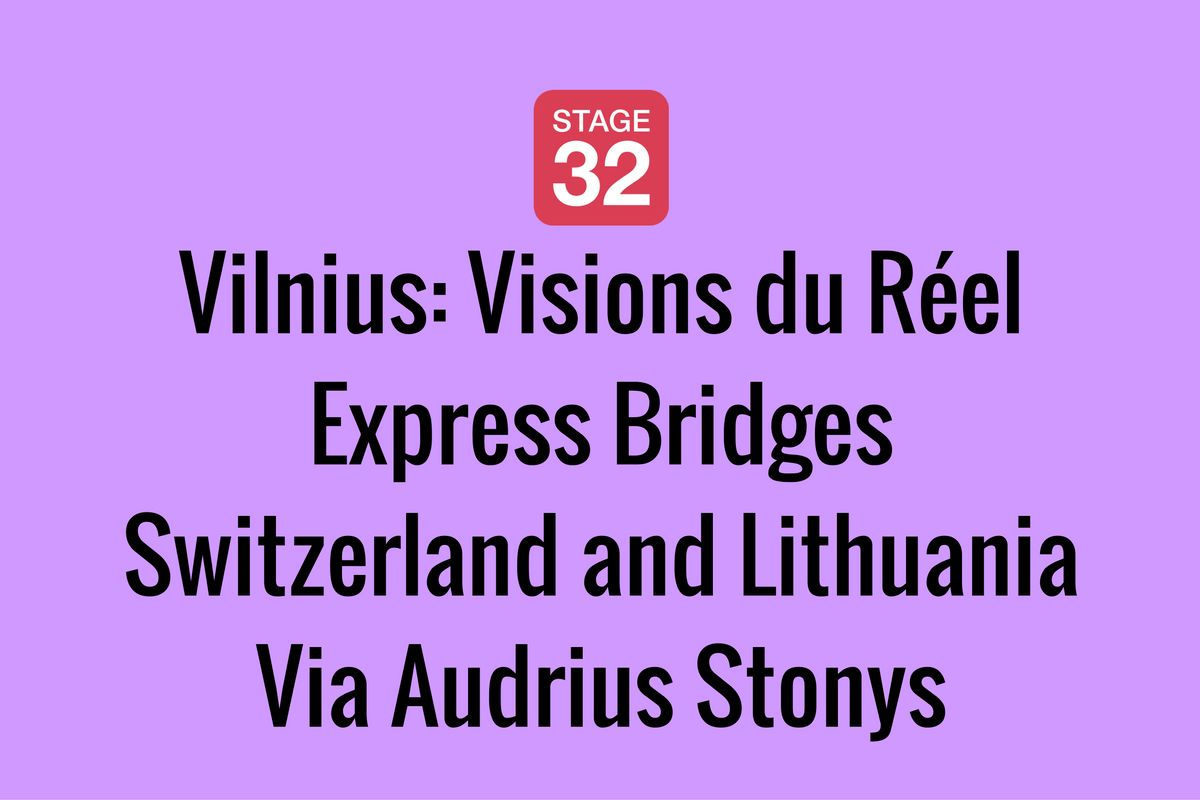 Vilnius: Visions du Réel Express Bridges Switzerland and Lithuania Via Audrius Stonys