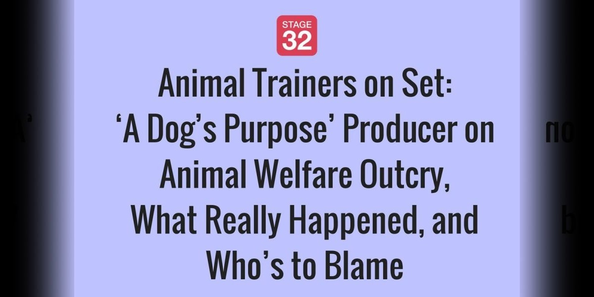 'A Dog's Purpose' Producer on Animal Welfare Outcry, What Really Happened, and Who's to Blame