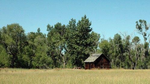 Cabin in Montana