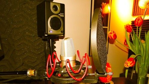The smallest large-diaphragm studio condenser microphone in the world: the Gefell M 930 Ts.