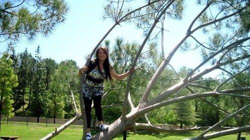 Tree Climbing Shot