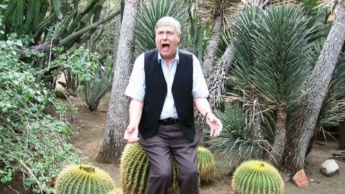 Rather prickly day in Palm Springs