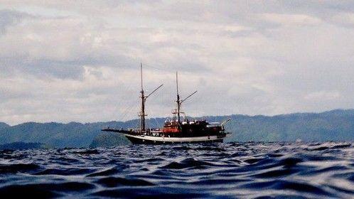 Waigeo Island, Raja Ampat, West Papua