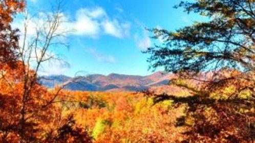 NC Mountains - Asheville Area