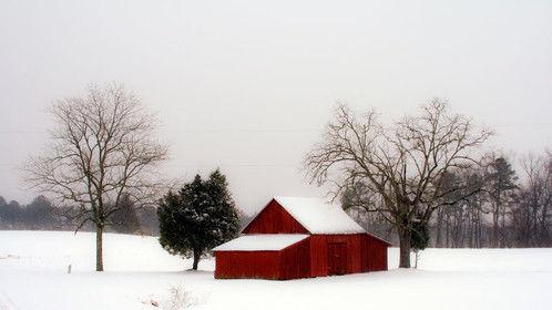 Photo for 2015 Christmas message