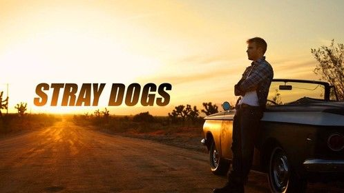 """Stray Dogs""  Feature Film SCY Pictures"