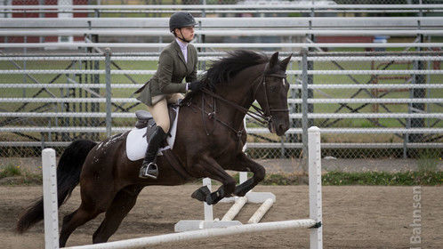 During a jumping competition at the King County, WA, Fair.