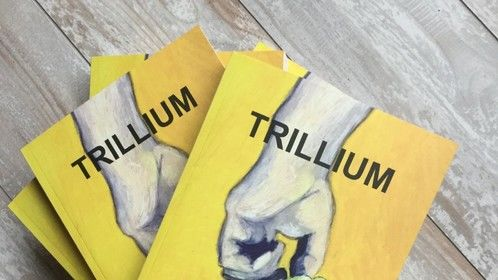 New release - Canadian novel TRILLIUM by MLHolton
