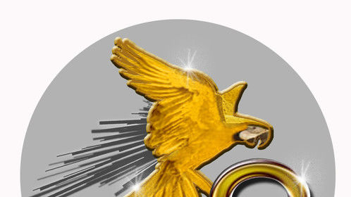 Our update social media icon. The company name, Oroloro, is loosely based on Spanish for golden parrot. The image looks more like a parrot now.
