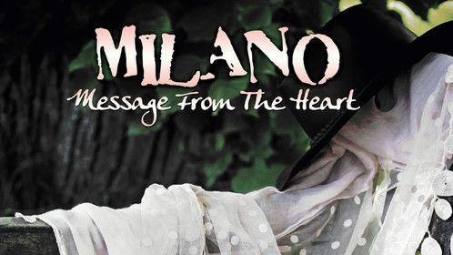 My Album - Milano, artwork