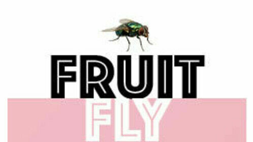 New poster for my TV pilot - Fruit Fly