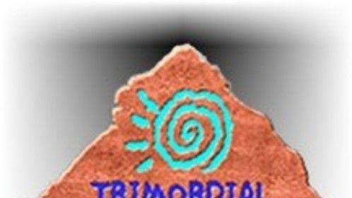 Trimordial Studio Las Vegas white logo