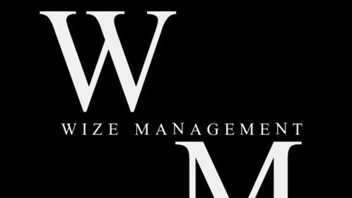 The Brand of Wize