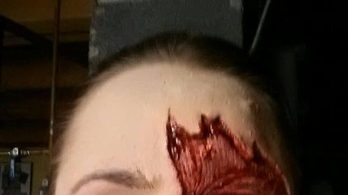 Hair Makeup and Special Effects Artist: Julie LeShane