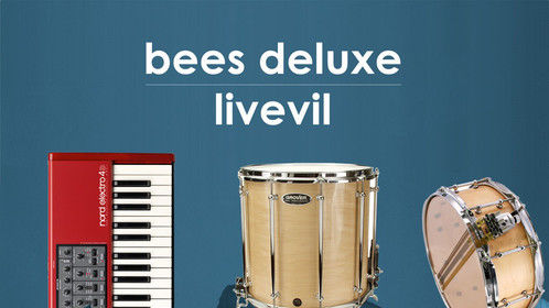 Bees Deluxe - livevil CD the perfect music soundtrack to your barroom fight scene!