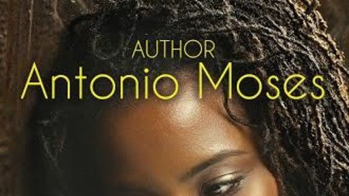 RITA (The Sole Survivor) is an Urban Fiction Novel written by Antonio Moses. Available in AMAZON and BARNES AND NOBLE. www.antoniomoses.com