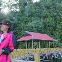 Mega Ismail