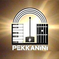 Pekkanini - Theremins And More!