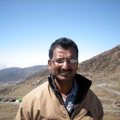 Ashoke Roy