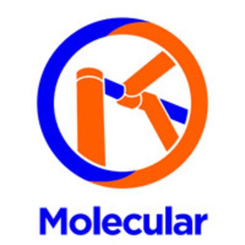 Molecular Mobile Scaffold Sales