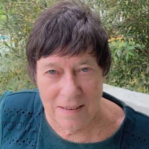 Ann Cassin
