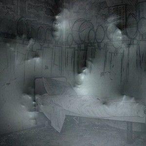 The Paranormal Investigators