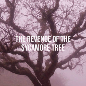 The Revenge of the Sycamore Tree