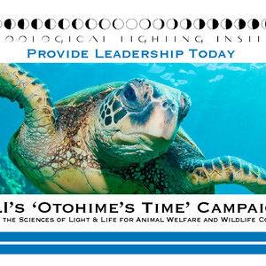 Inhumanities: Otohime's Time