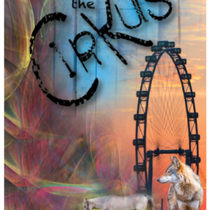 The Cirkus