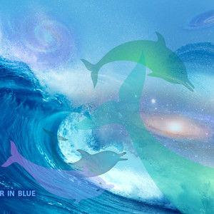 Ripple - a Dolphin Love Story