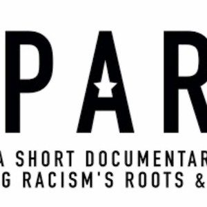 Spark: A Systemic Racism Story