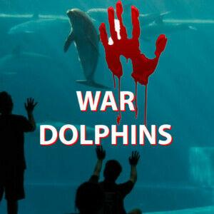 War Dolphins!