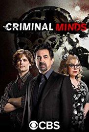 "Criminal Minds - S11E11 ""Entropy"""