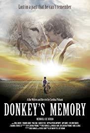 Donkey's Memory
