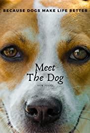 Meet the Dog