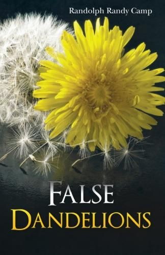 False Dandelions