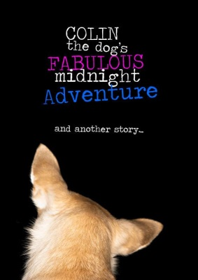 Colin the Dog's Fabulous Midnight Adventure and Another Story