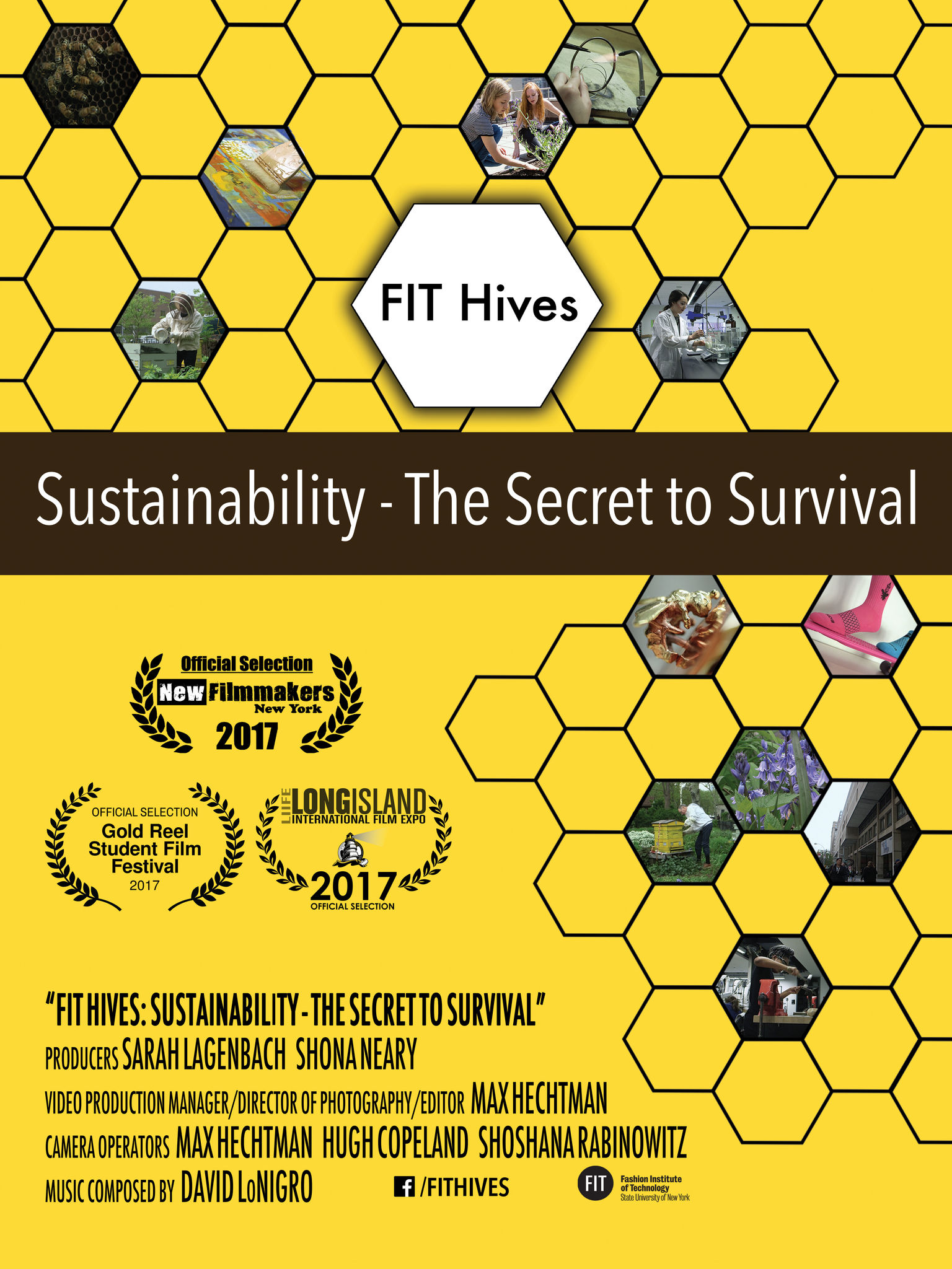 FIT Hives: Sustainability - The Secret to Survival