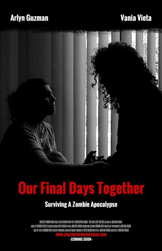 Our Final Days Together