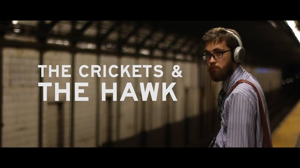 The Crickets and The Hawk