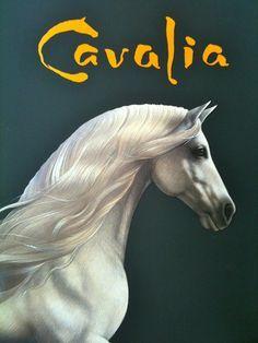 Cavalia Experience