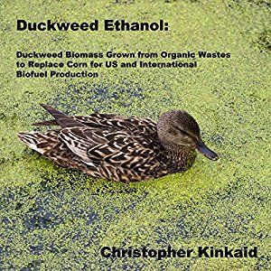 Duckweed Ethanol: Duckweed Biomass Grown from Organic Wastes to Replace Corn for US and International Ethanol Biofuel Production