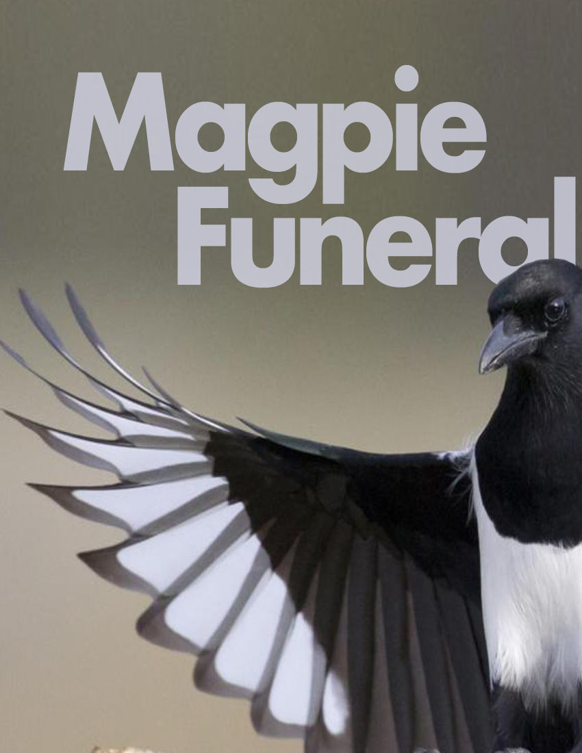 Magpie Funeral