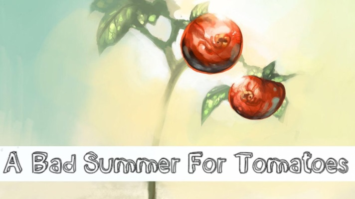 A Bad Summer for Tomatoes