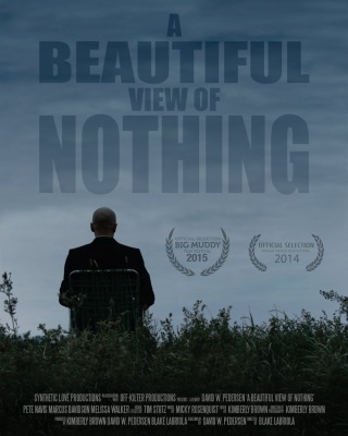 A Beautiful View of Nothing