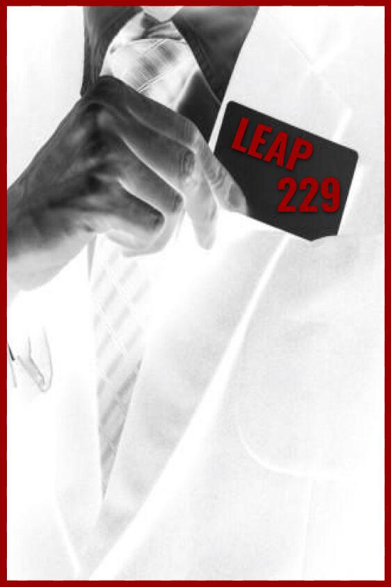 Leap 229
