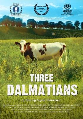 Tre dalmatinere