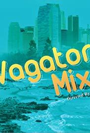 Vagator Mixer
