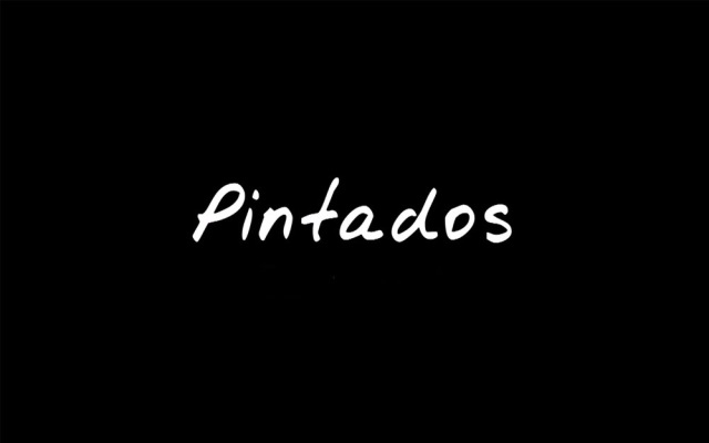 The Pintados Project